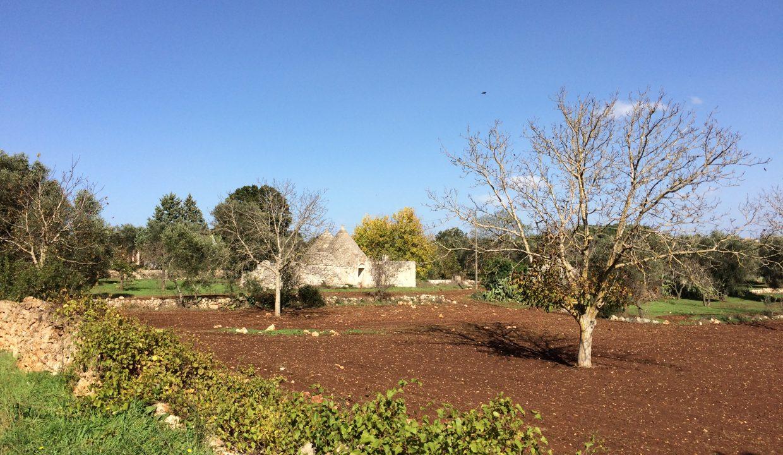 0224 trullo da ristrutturare e ampliare contrada frutto pisciacalze zona residenziale ceglie messapica (52)
