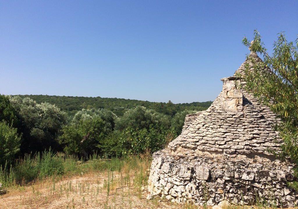 0237 trulli rustici panoramici da ristrutturare e ampilare (15)
