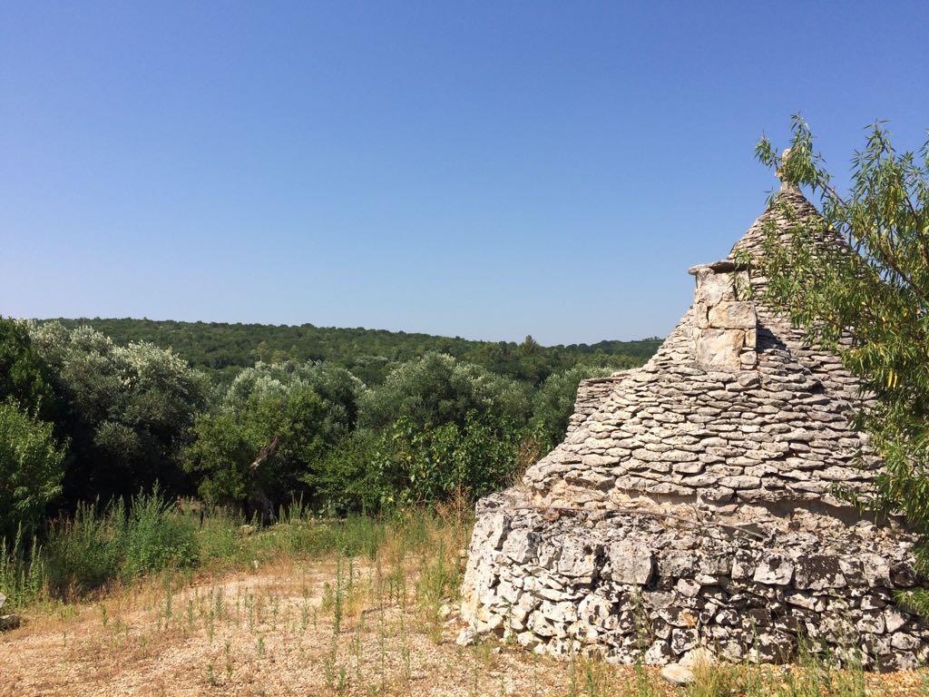 Trullo rustico panoramico a Ceglie Messapica (BR)