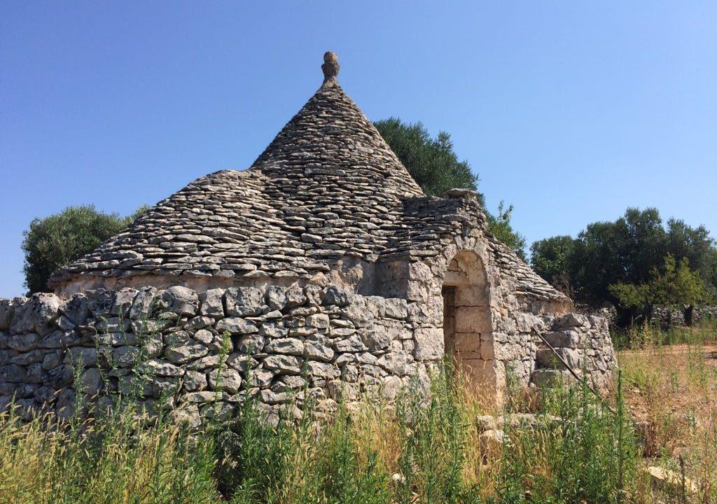 0237 trulli rustici panoramici da ristrutturare e ampilare (19)
