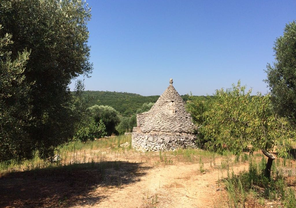 0237 trulli rustici panoramici da ristrutturare e ampilare (2)