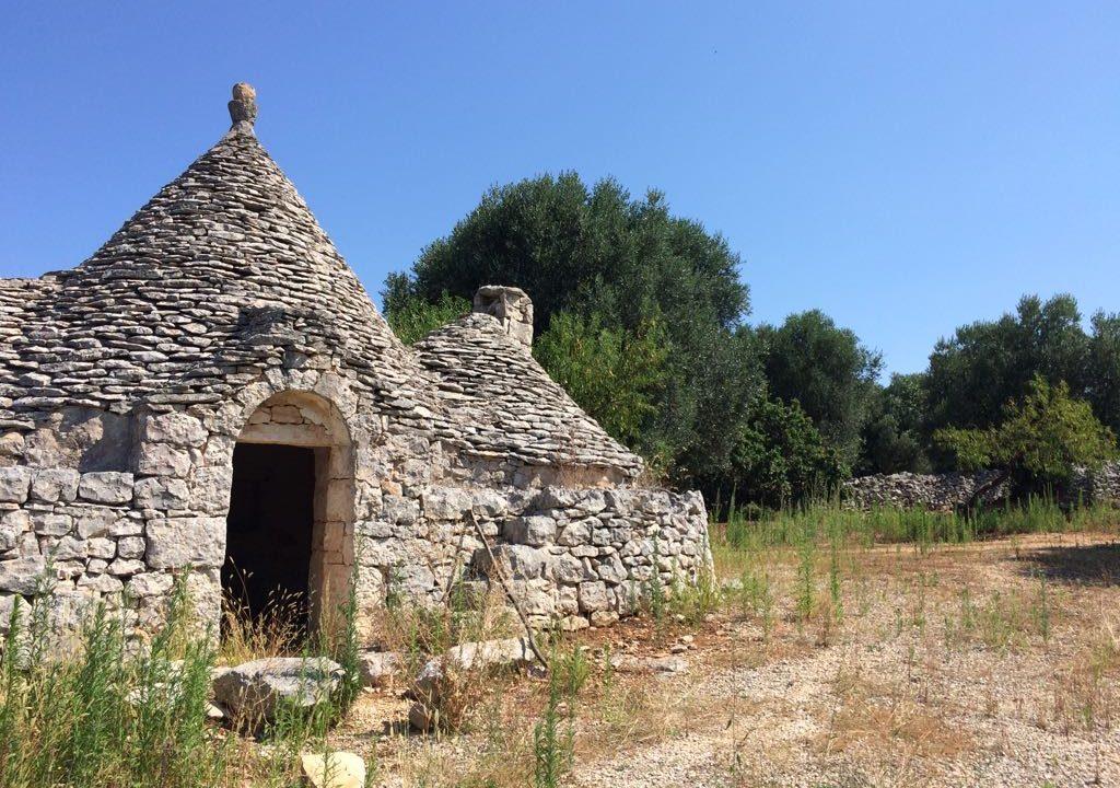 0237 trulli rustici panoramici da ristrutturare e ampilare (21)