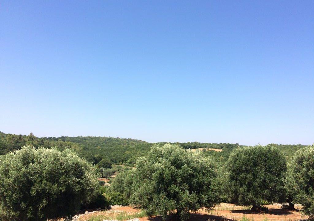 0237 trulli rustici panoramici da ristrutturare e ampilare (6)