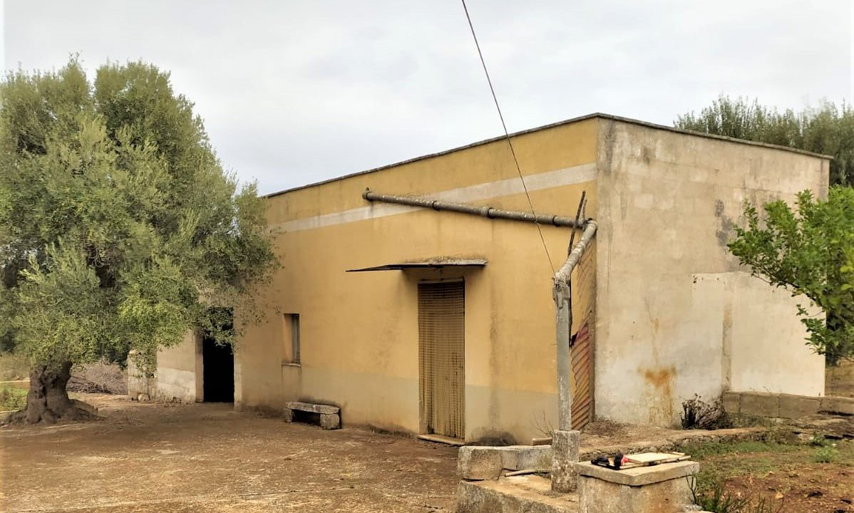 0374 trulli rustici in vendita con lamie e terreno (6)