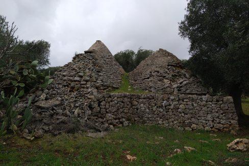 0393 trulli da ristrutturare due corpi di trulli in un terreno olivato di due ettari (11)