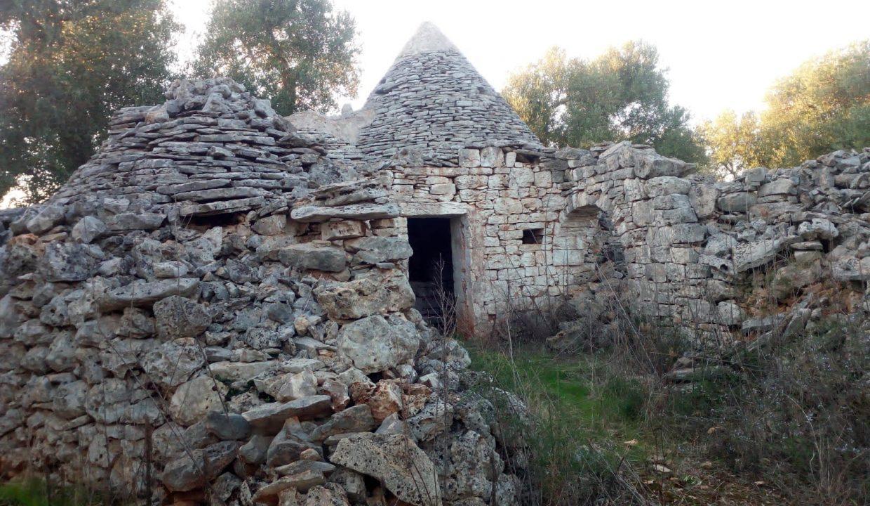0393 trulli da ristrutturare due corpi di trulli in un terreno olivato di due ettari (26)
