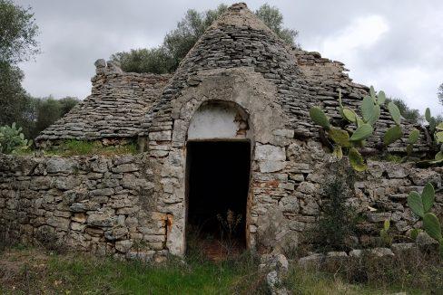 0393 trulli da ristrutturare due corpi di trulli in un terreno olivato di due ettari (3)