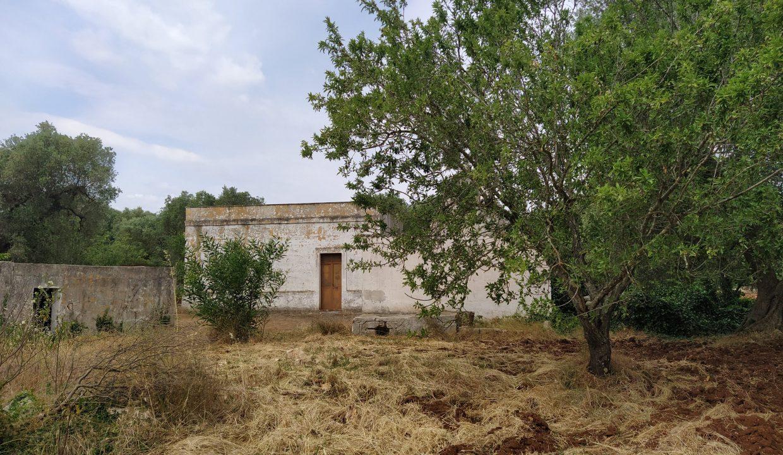 0462 trulli lamie e casali da ristrutturare e ampliare a ostuni terreni edificabili in vendita (21)
