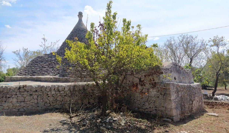 0466 trullo e lamia rustici in vendita a ceglie messapica Alto salento valle d'itria (20)